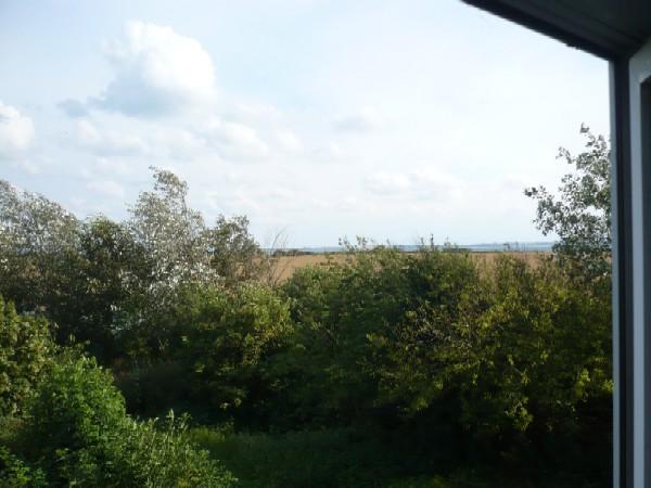 #2 WoZr, Blick aus dem Fenster